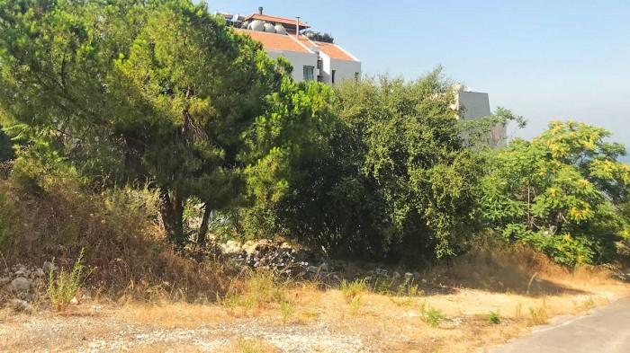 in Kfar Hbab