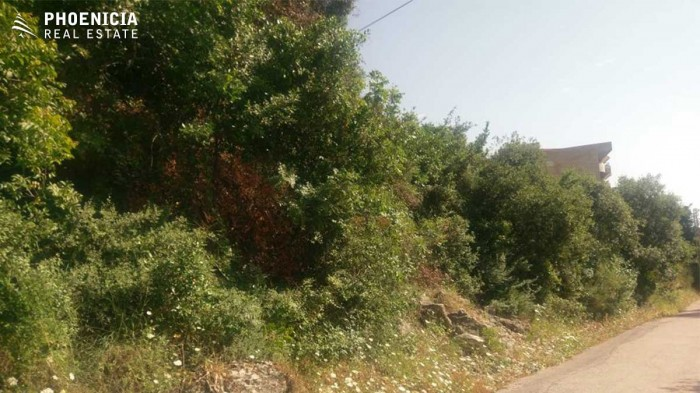 in Haret Sakhr
