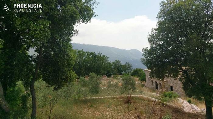 in Fatreh
