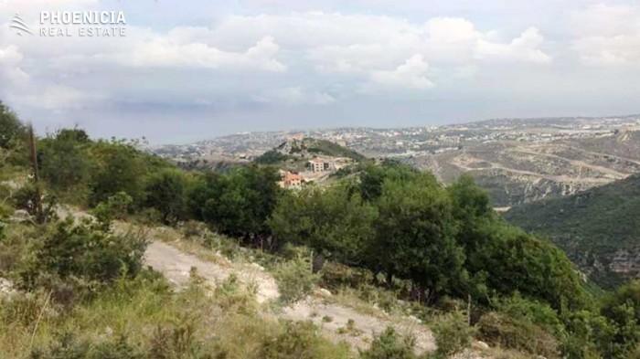 in Kfarkwas