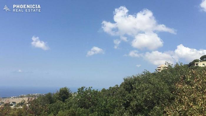 in Kfar Mashoun